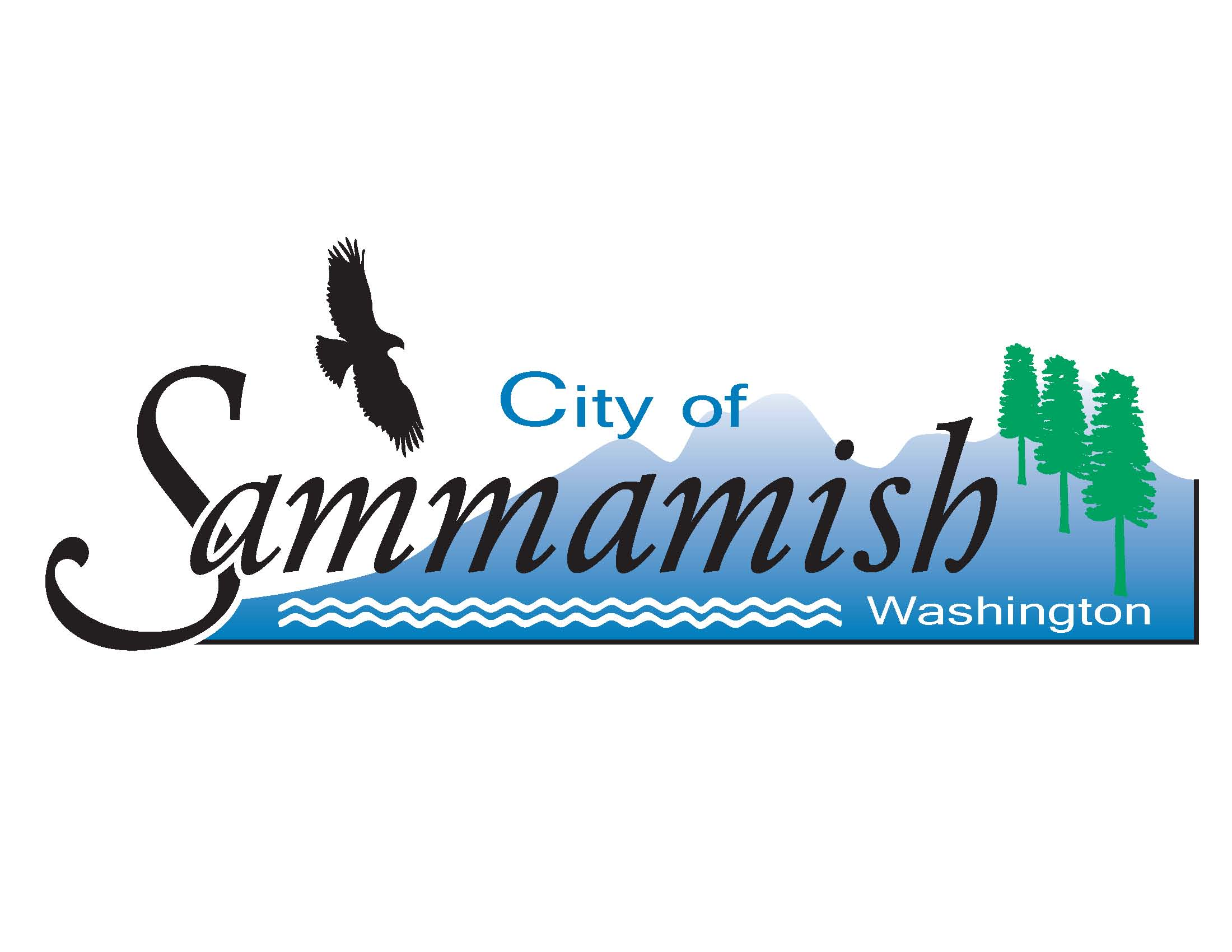 Sammamish Fall Recycling Event