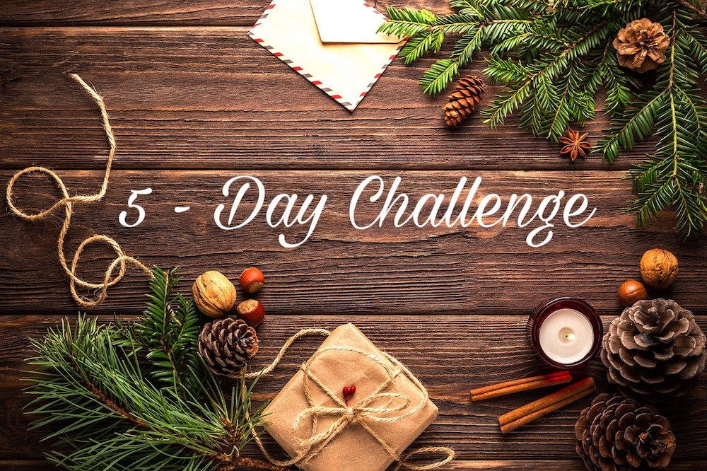 5-day holiday organizing challenge